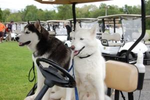 UConn Golf-7